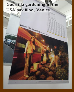 Guerilla gardening in the USA pavillion, Venice.