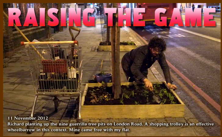 Raising The Game. Guerrilla Gardening in Elephant and Castle