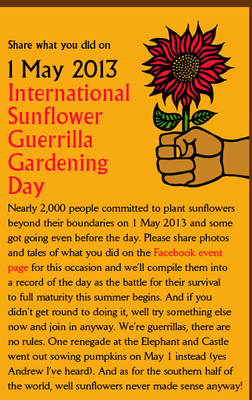1 May 2013 International  Sunflower  Guerrilla  Gardening  Day Nearly 2,000 people committed to plant sunflowers beyond their boundaries on 1 May 2013 and some got going even before the day. Please share photos and tales of what you did on the Facebook event  page for this occasion and we�ll compile them into a record of the day as the battle for their survival to full maturity this summer begins. And if you  didn�t get round to doing it, well try something else now and join in anyway. We�re guerrillas, there are  no rules. One renegade at the Elephant and Castle went out sowing pumpkins on May 1 instead (yes  Andrew I�ve heard). And as for the southern half of  the world, well sunflowers never made sense anyway!